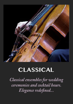Classical musicians and ensembles for your wedding reception, cocktail hour or corporate event for the ultimate in elegance