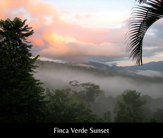 Finca Verde Sunset 3
