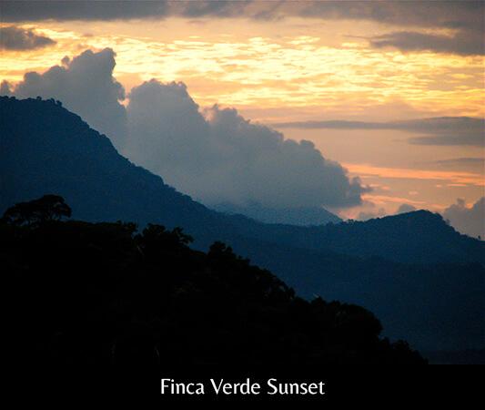 Finca Verde Sunset