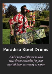 Paradiso steel drums, Caribbean Music, calypso, soco, Island Music